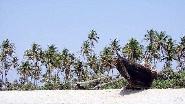 Аутентичная лодка на фоне пальм на пляже Маджорда