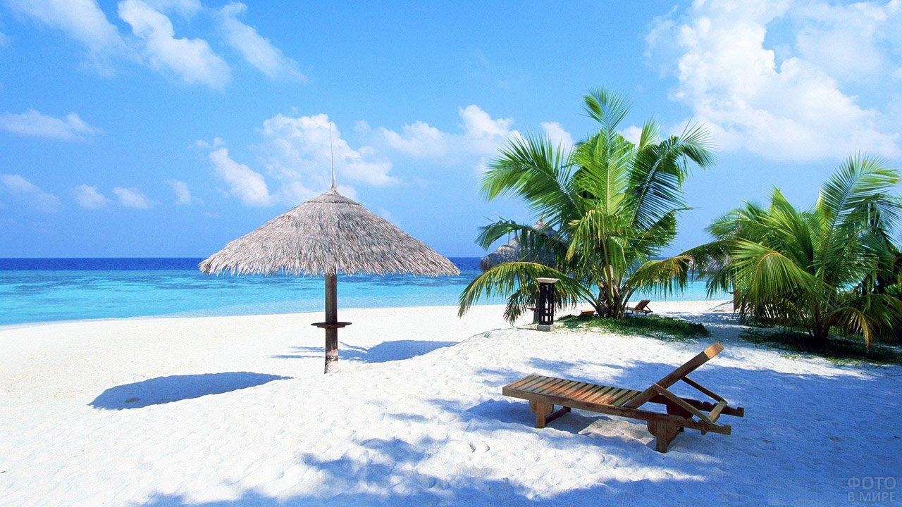 Шезлонг, зонтик и пальмы на белоснежном песке пляжа Гоа