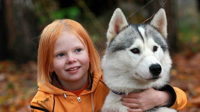 Хаски с рыжеволосой девочкой