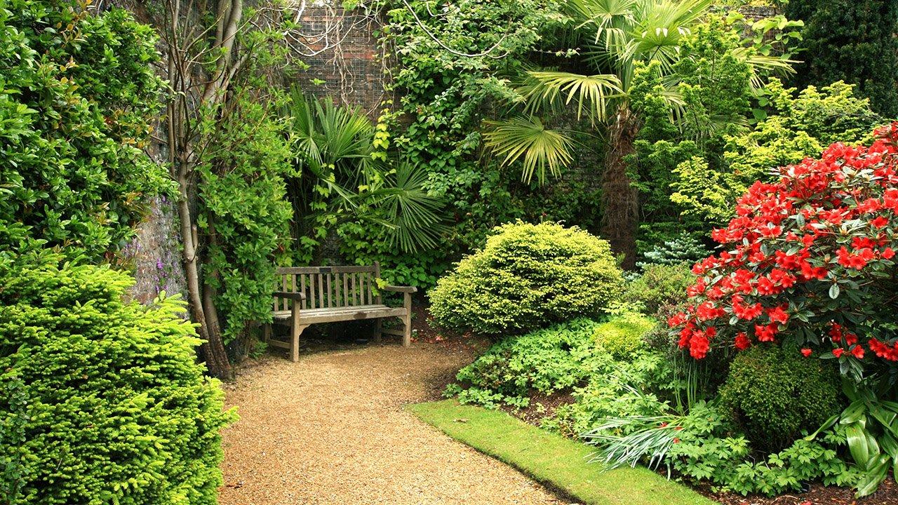 Скамейка в тенистом углу тропического сада