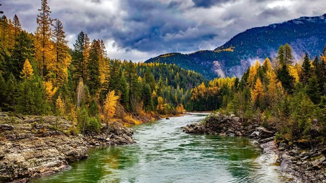 Осенний лес на берегах горной реки