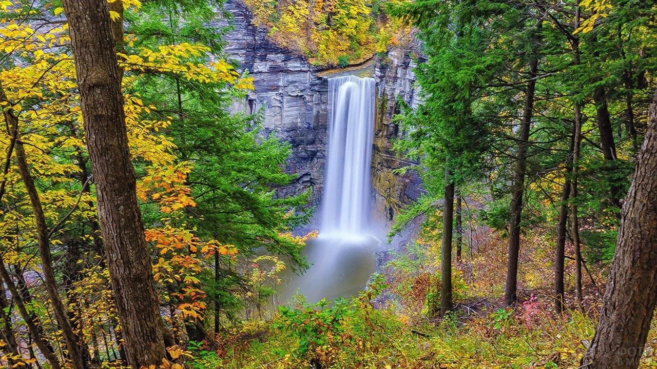 Живописный водопад в осеннем лесу