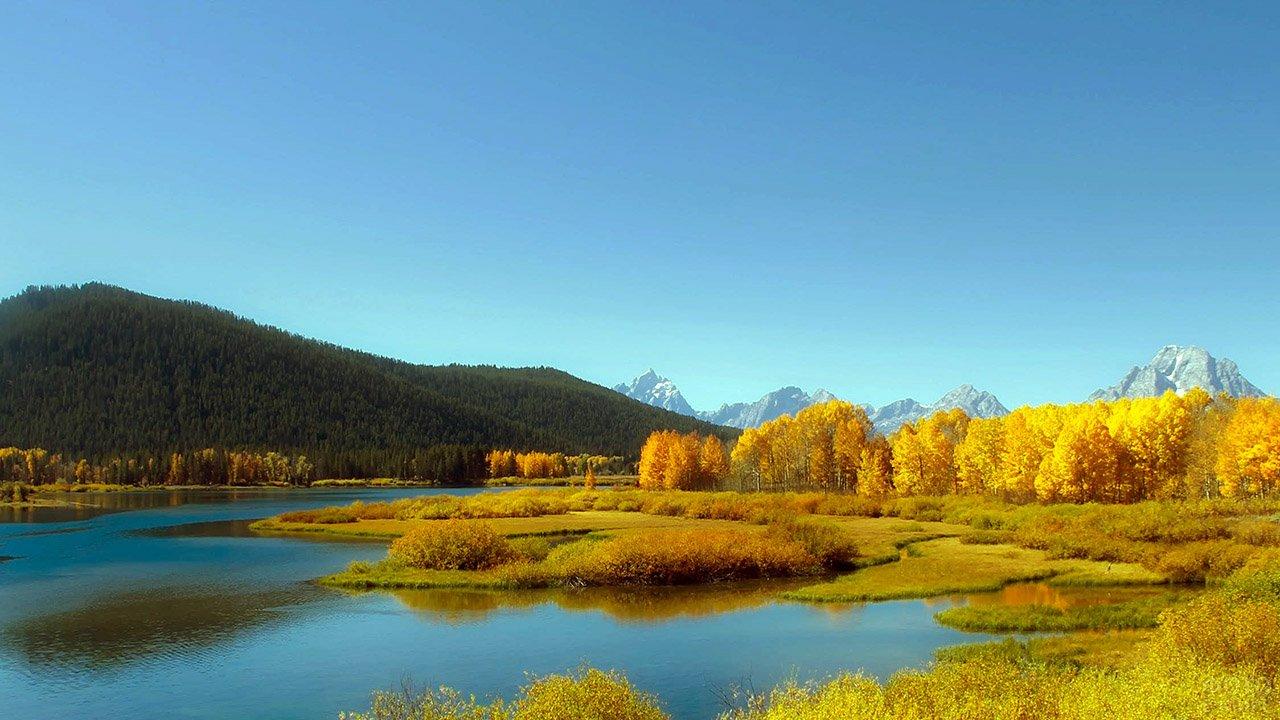 Золотые кроны леса на берегу высокогорного озера