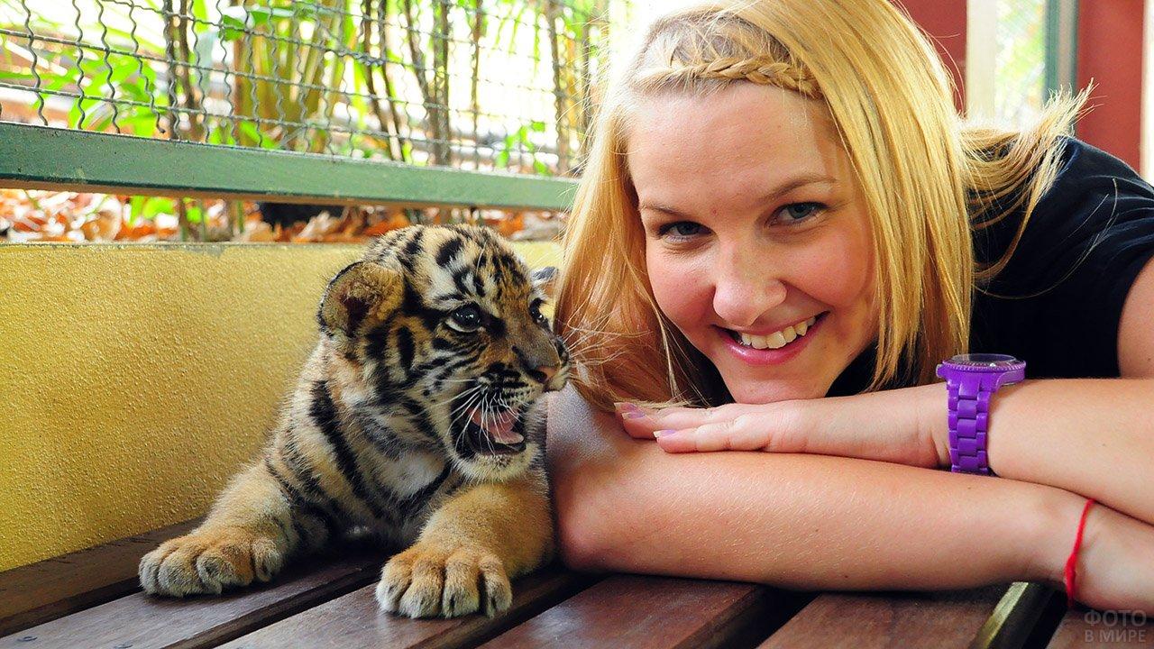 Туристка с тигрёнком в Королевстве тигров на Пхукете