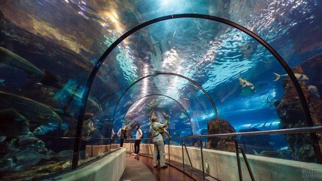 Туристы в подводном тоннеле Аквариума Пхукета