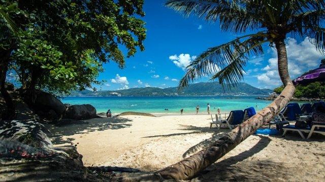 В тени пальм на пляже Парадиз на Пхукете