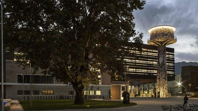 Дерево на фоне экологичного здания, сберегающего энергию