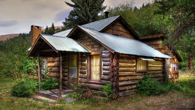 Бревенчатый дом возле леса