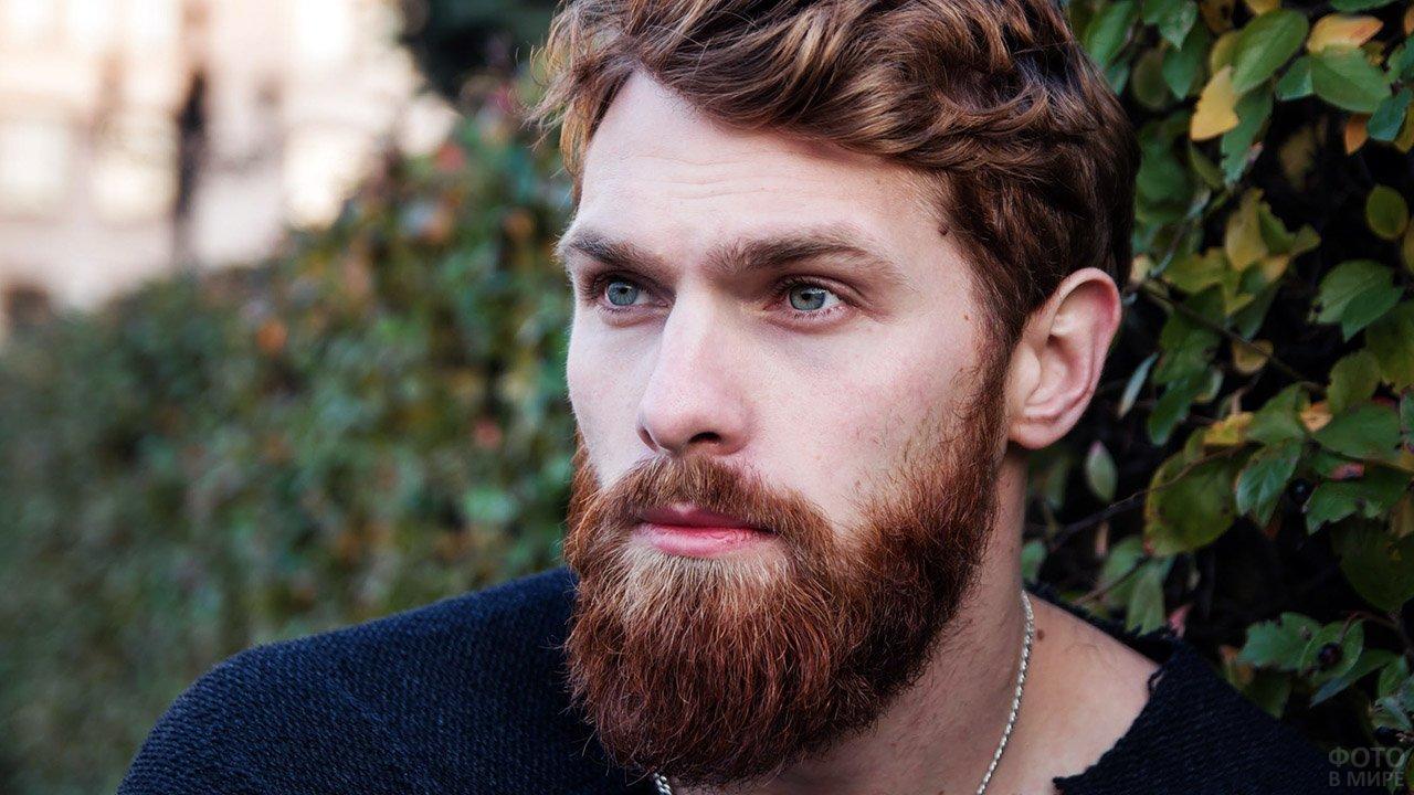 Бородатый хипстер с каштановыми волосами на фоне летней зелени
