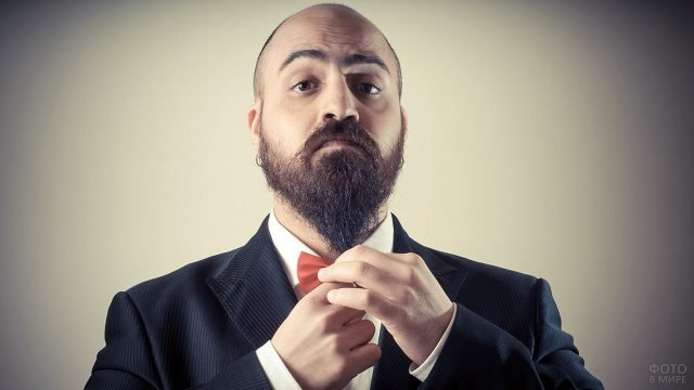 Лысеющий мужчина со скандинавской бородой в костюме с бабочкой