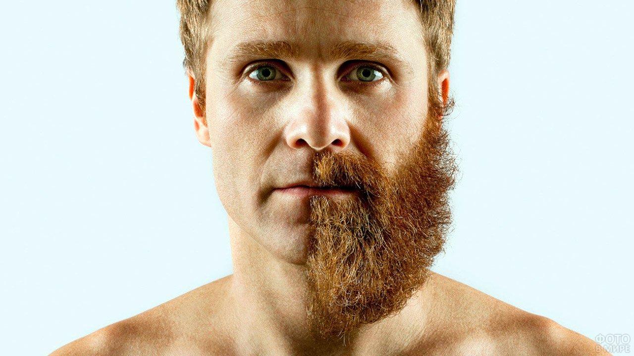 Рыжеволосый мужчина с наполовину выбритым лицом, наполовину - с бородой