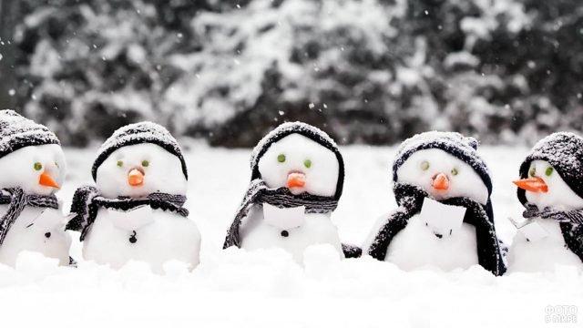 Хор снеговичков-пингвинов