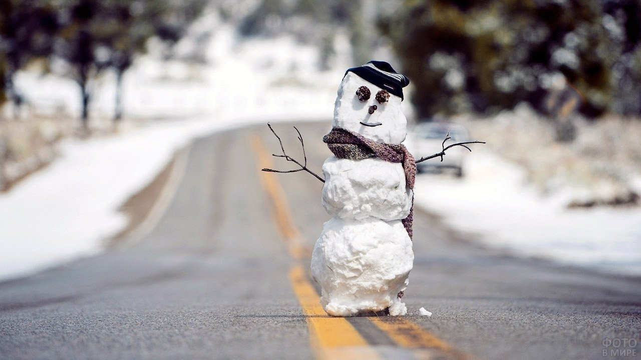 Экспресс-снеговик с глазами-шишками, в шапке и шарфе посреди проезжей части