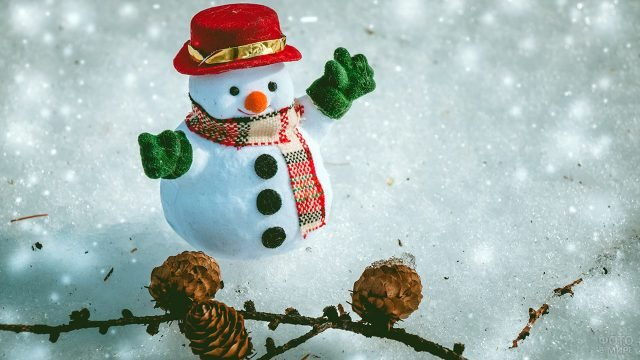 Мини-снеговичок и еловая ветка с шишками на снегу