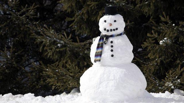 Монументальный классический снеговик на фоне елей