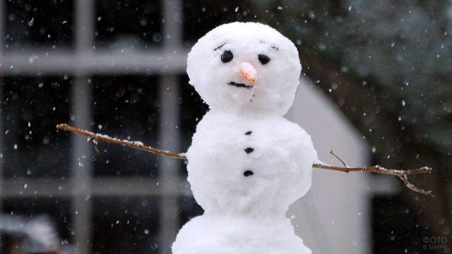 Скептический снеговик под снегопадом