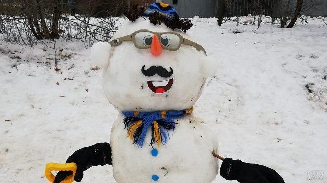 Снеговик-ботан