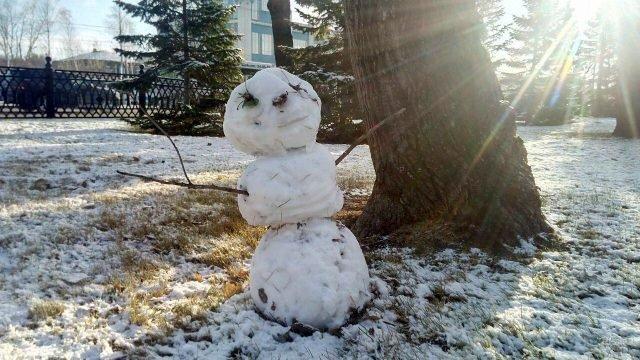 Снеговик из первого снега в тени дерева