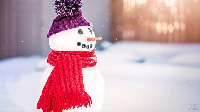 Снеговик в вязанных шапочке и шарфе под лёгким утренним снегопадом