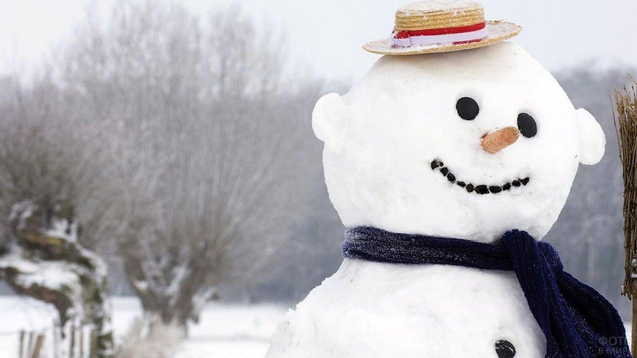Улыбчивый снеговик в шляпе-канапе в зимнем поле
