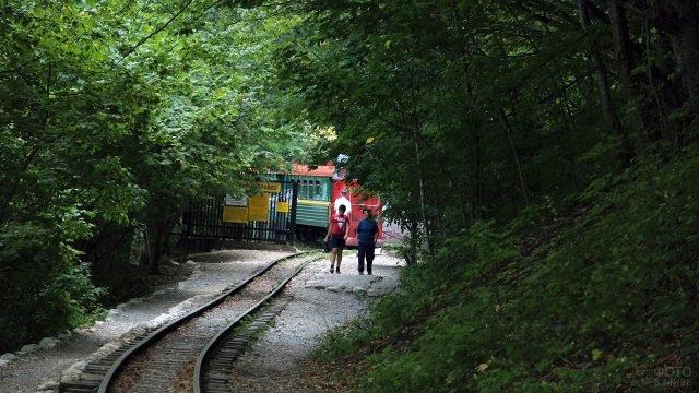 Туристы отправляются пешком от станции вдоль узкоколейки в Гуамском ущелье