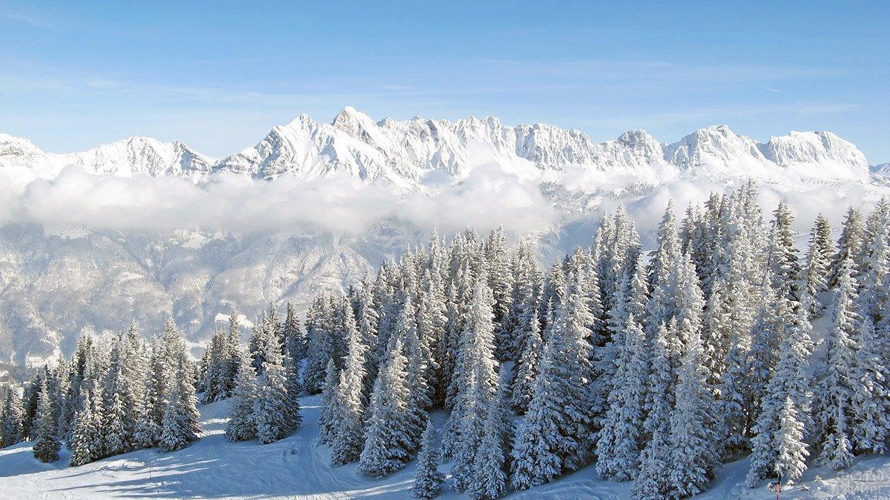 Морозное утро в горах