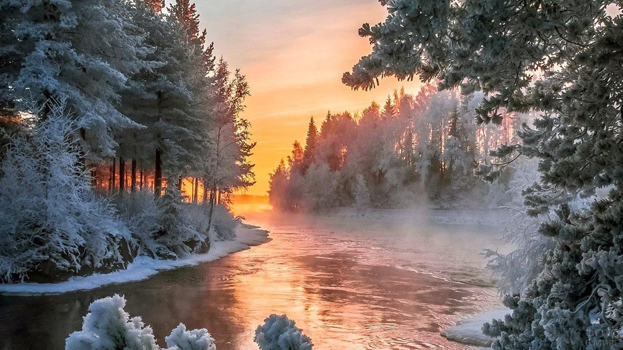 Пушистые заснеженные ели над рекой на фоне восхода