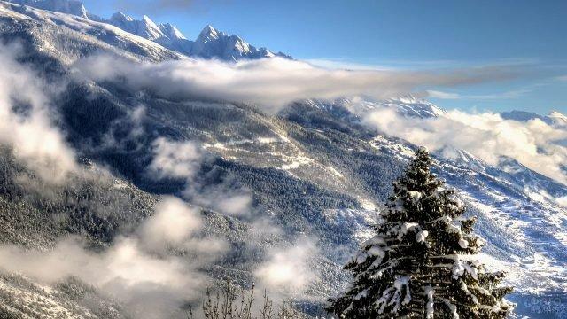 Туманное зимнее утро в горах