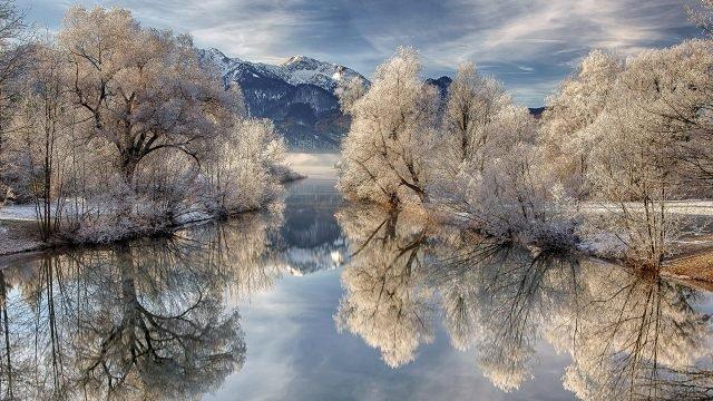 Заиндевелые кроны деревьев у воды ранним зимним утром в горах