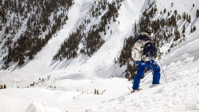 Лыжник стоит на склоне горы на фоне елей