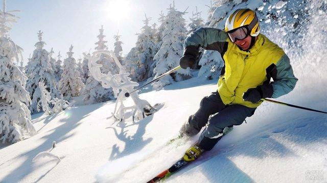 Мужчина катится на лыжах по склону горы с заснеженными елями