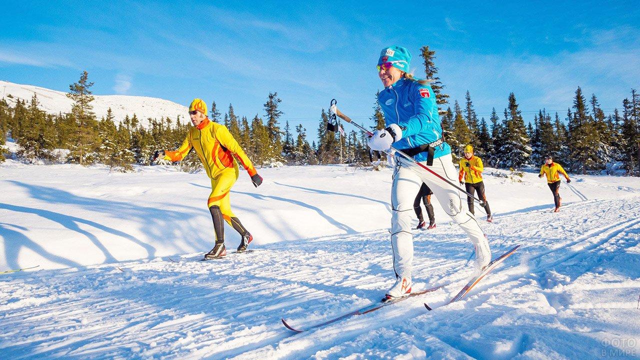 Участники лыжного марафона