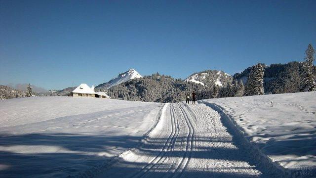 Заснеженный пейзаж с двумя лыжниками на прогулочной трассе