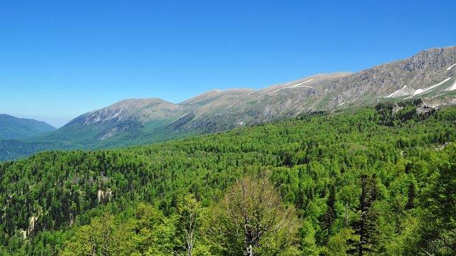 Пейзаж в Кавказском государственном заповеднике