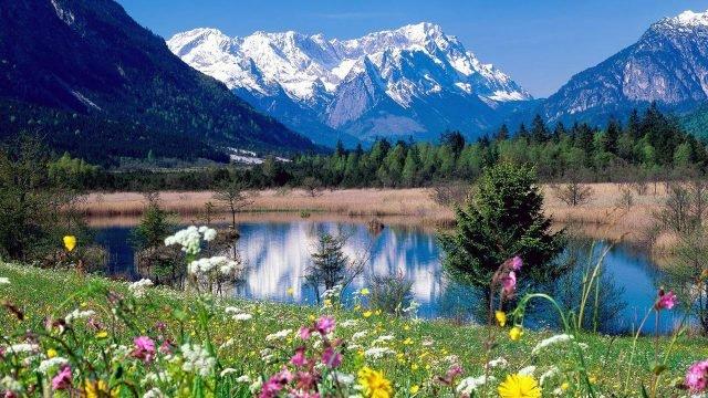 Цветущие берега озера в Кавказских горах Абхазии