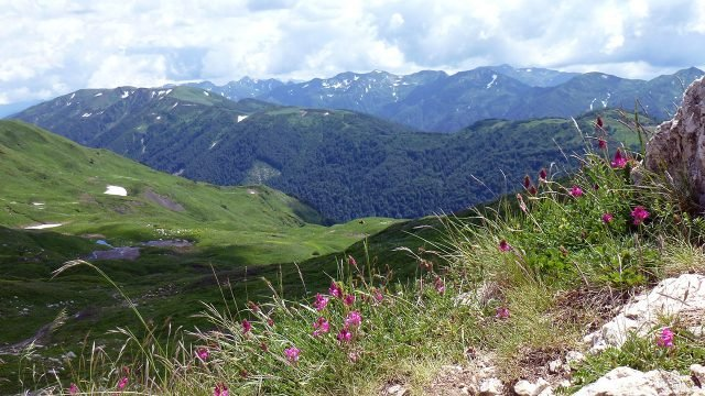 Лето в горах Северного Кавказа Краснодарского края