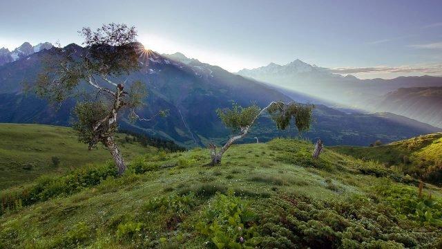 Рассветный пейзаж с берёзами в Кавказских горах Азербайджана