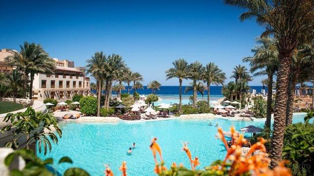 Тропический парк и бассейн при отеле в курорте Макади
