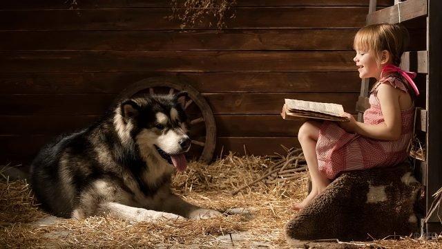 Девочка читает собаке книгу