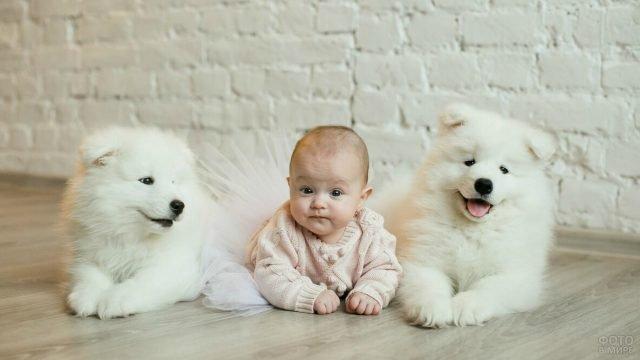 Ребёнок лежит на полу с собаками