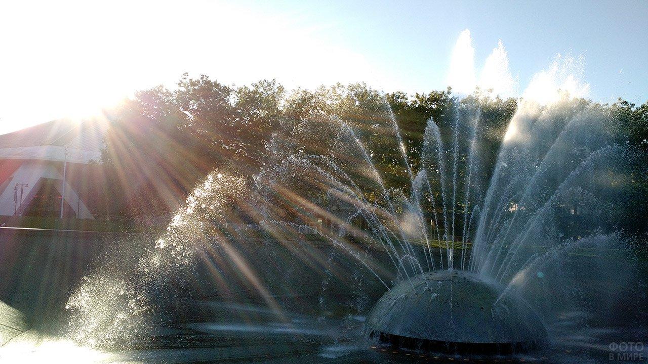 Струи фонтана-полусферы в лучах солнца