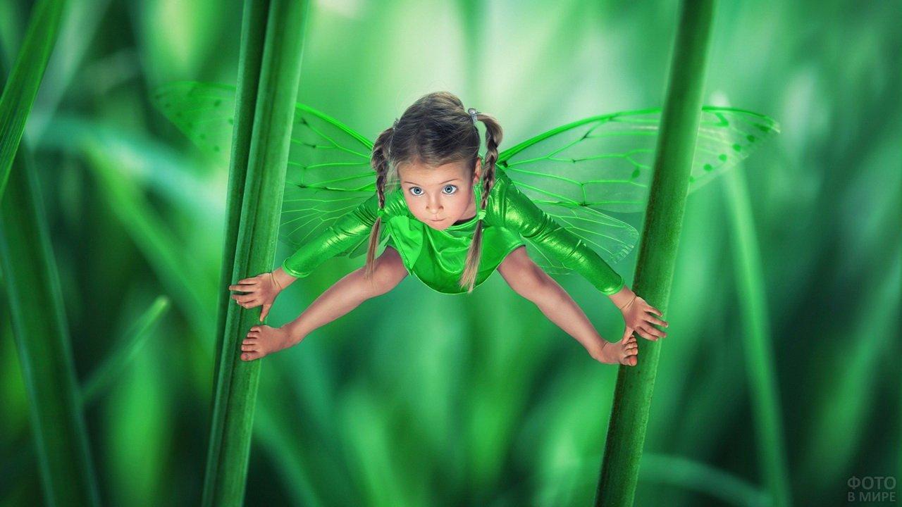Девочка-фея лазит по стебелькам травы