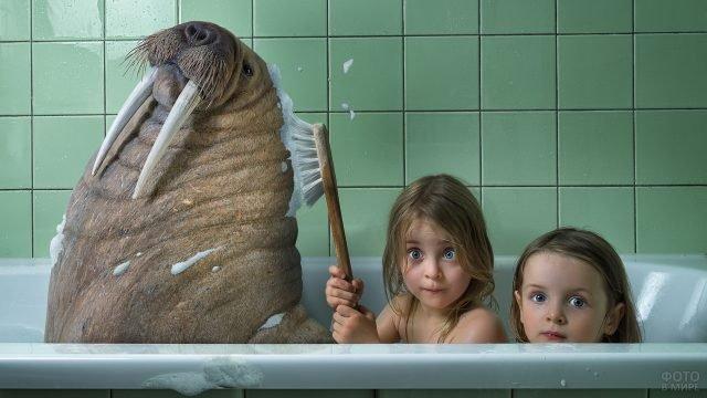 Девочка моет моржа в ванной