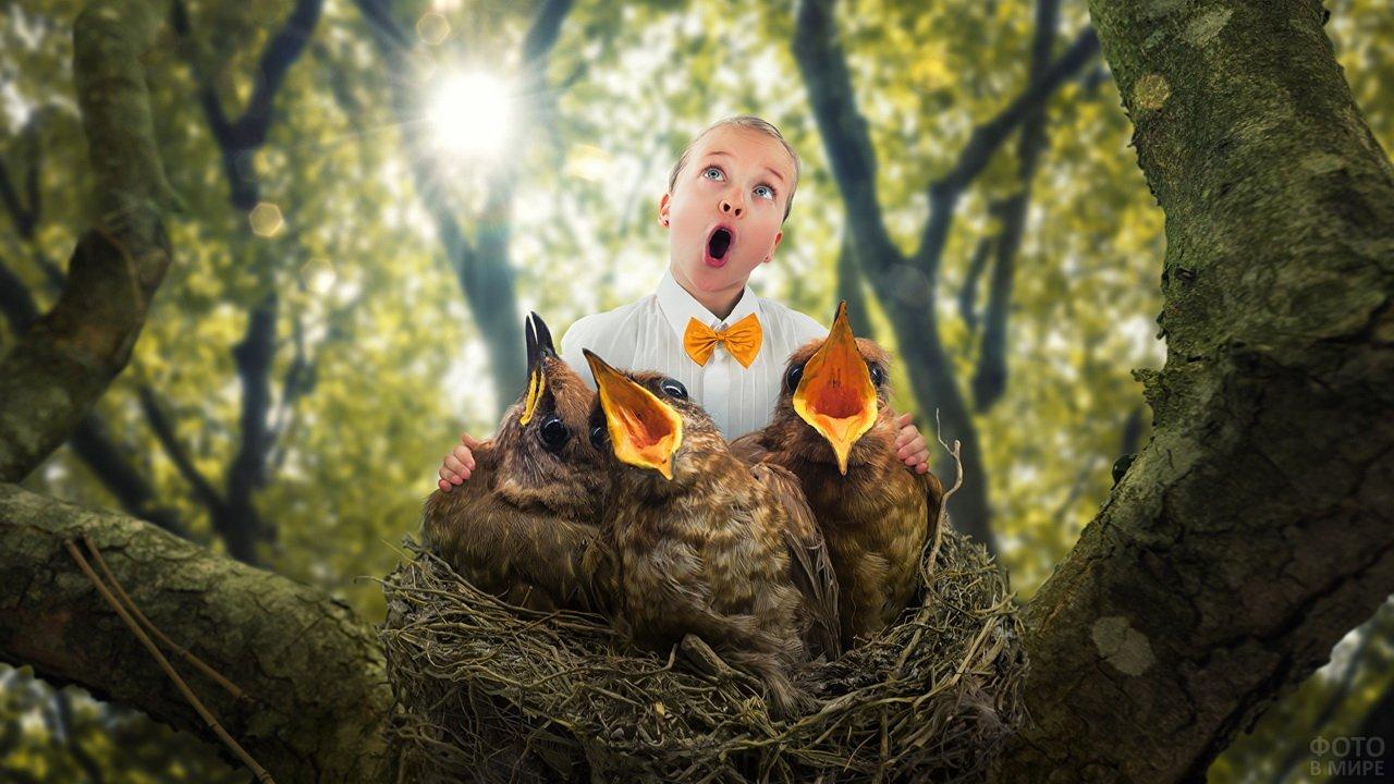 Девочка с птенцами в гнезде