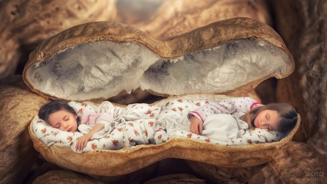 Девочки спят с скорлупе от земляного ореха