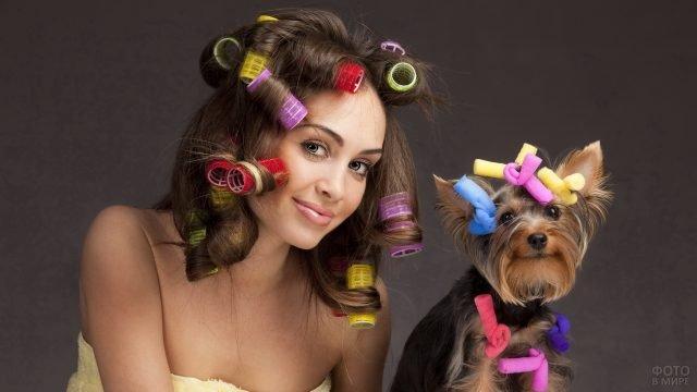 Девушка и собака в бигудях