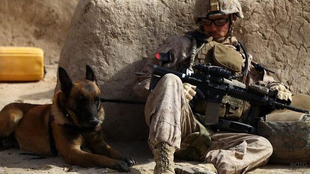 Солдат американской армии и овчарка
