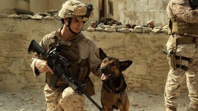 Солдат гладит пса
