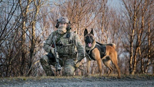 Солдат спецназа с собакой