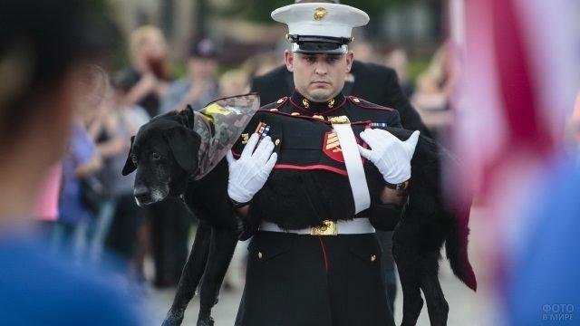 Солдат в парадной форме с боевой собакой